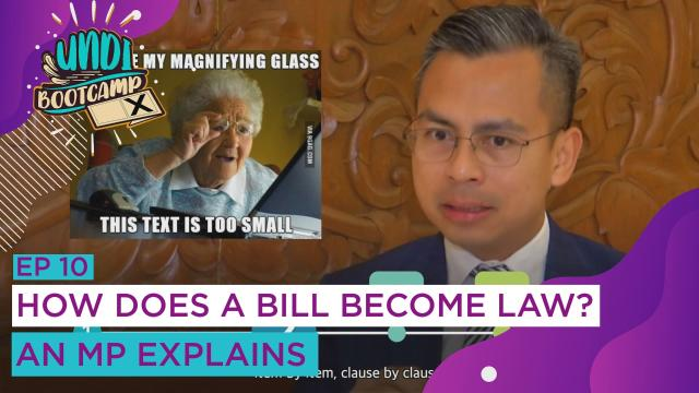 #UNDIBootcamp: How does a bill become law? An MP explains